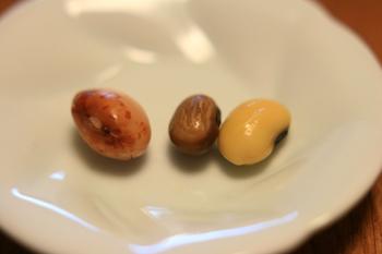 boiled-beans[1].jpg